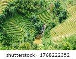 Beautiful Terraced Rice Fields...