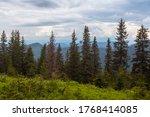 Landscape View Of Summer Alpin...