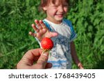 Mother\'s Hand Giving Ripe Red...
