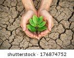 hands holding tree growing on... | Shutterstock . vector #176874752
