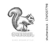 Vector Squirrel With Hand Drawn ...