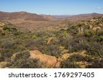 View Over The Namaqualand Veld...