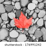 autumn leaf background sea... | Shutterstock . vector #176991242