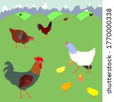 Illustration With Chickens On...