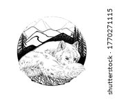 Hand Drawn Wolf  Sketch...