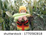 Cute Child Holding Ripe Cobs Of ...