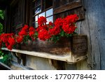 Close Up Of A Flower Box With...