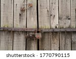Old Wooden Door With A Steel...