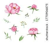 watercolor set of pink peonies... | Shutterstock . vector #1770906875