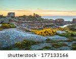 pink granite coast | Shutterstock . vector #177133166
