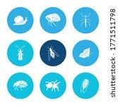 bug icon set and tarantula with ...