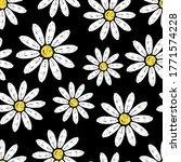 Beautiful White Daisy Flowers...
