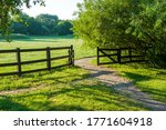 An Old Wooden Cattle Gate...