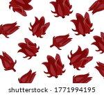 closeup fresh roselle flower  ...   Shutterstock .eps vector #1771994195