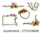 flowers tropical frames.... | Shutterstock .eps vector #1772128838