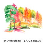 Watercolor Autumn Trees Of...