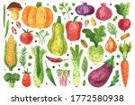 vegetables clip art  set.... | Shutterstock . vector #1772580938