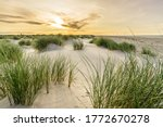 Beach With Sand Dunes And...
