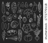 set of outline vegetables on... | Shutterstock .eps vector #1772770118