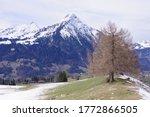 Niesen mountain seen from Aeschiried