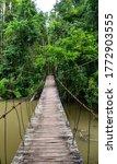 Hanging Wooden Bridge In Khao...