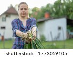 young woman farmer holding...