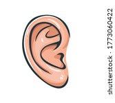 vector illustration of ear icon.... | Shutterstock .eps vector #1773060422