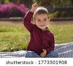 Little Cute Boy Sits In A...