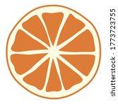 orang fruit. oranges that are...   Shutterstock . vector #1773723755