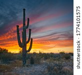 A photo of the sunset with a cactus at the East Peoria Preserve near Phoenix, Arizona