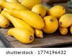 Fresh Yellow Squash On Sale At...
