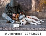 beggar  homeless with two dogs...