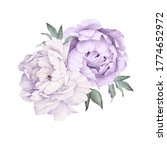 peonies. bouquet of flowers ... | Shutterstock . vector #1774652972