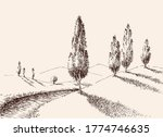 a footpath in nature  hills and ... | Shutterstock .eps vector #1774746635