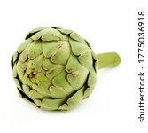 Green Artichokes  Camus Of...