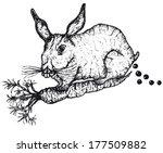 reproduction,bunny,carotte,chaîne,oreilles,yeux,viande,winnie l'ourson,tige,végétarien,moustaches