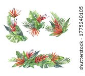 watercolor set of tropical... | Shutterstock . vector #1775240105