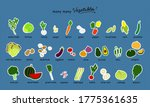 Vegetables Flat Illustration...