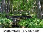 Bridge Over Drying River  Sweden