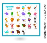 animal alphabet letter a z | Shutterstock .eps vector #177565922