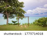 A brown wood picnic Swing with gorgeous view under of tall trees in garden overlooking pacific ocean with a cloudy sky. Grass surrounds the bench. white flower blurred foreground. relax banner concept