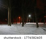 Night Park In Winter With Snow...
