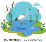 a heron bird stands on one foot ...   Shutterstock .eps vector #1776641438