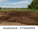 Farmyard Manure And Mud Textur...