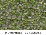 seamless pavement stones and... | Shutterstock . vector #177665066