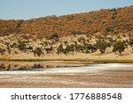 Salt And Mineral Lake At Botto...