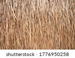 Golden Dry Grass Lines For...