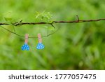 Two wooden clips with blue...
