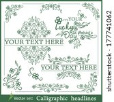 st. patrick s day calligraphic... | Shutterstock .eps vector #177741062