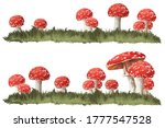 Red Fly Amanita Mushrooms In...